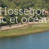 Vacances sportives et découverte de la nature à Hossegor